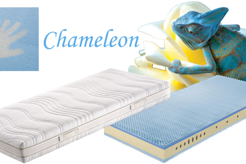 Chameleon_fb